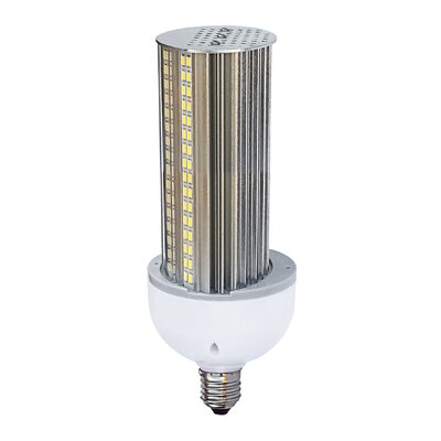 30W Medium LED Light Bulb Bulb Temperature: 3000K