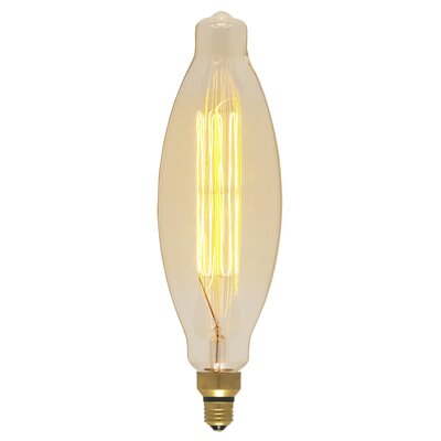 Amber 100W E26/Medium (Standard) Incandescent Vintage Filament Light Bulb