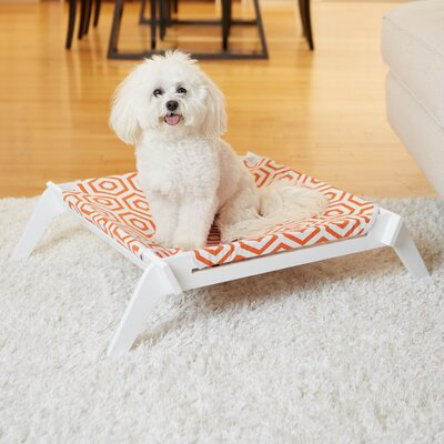 Regency Designer Pet Lounge Cot with Reversible Fabric Hammock