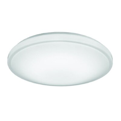 Flush Mount Bulb Color Temperature: 3000K
