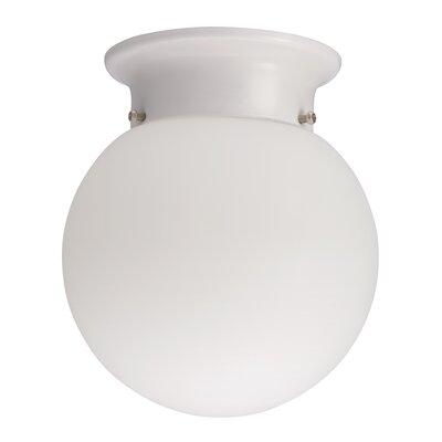 Globe 1-Light Flush Mount