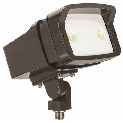 OFL Yoke Mounted 1-Light LED Flood Light