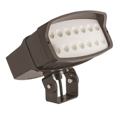 OFL Yoke Mount 2-Light LED Flood Light