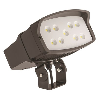 OFL Slipfitter Mount 2-Light LED Flood Light