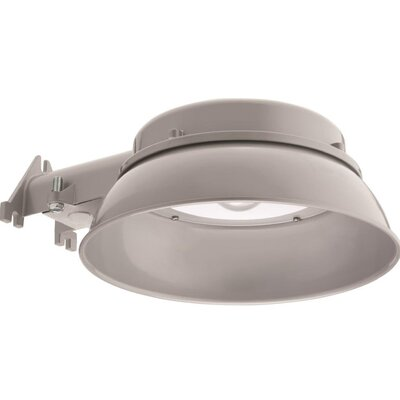 Integrated Outdoor LED Area Light