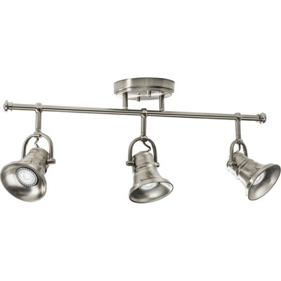 LED 3 Head Peppermill Fixed Track Lighting Light Finish: Brushed Nickel