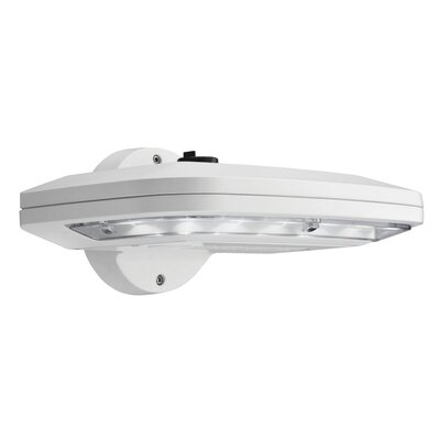 Outdoor LED Wall Mount Area Light Color: White