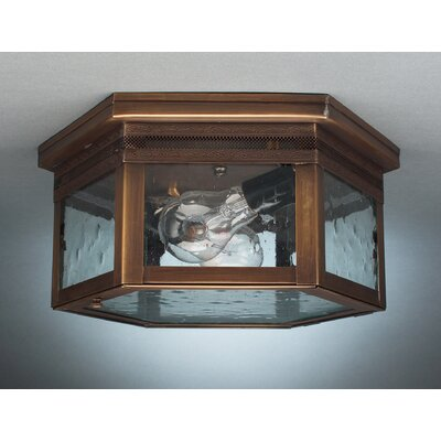 Williams 5.75 Two Medium Base Sockets Flush Mount with Galley Finish: Verdi Gris, Shade Color: Caramel