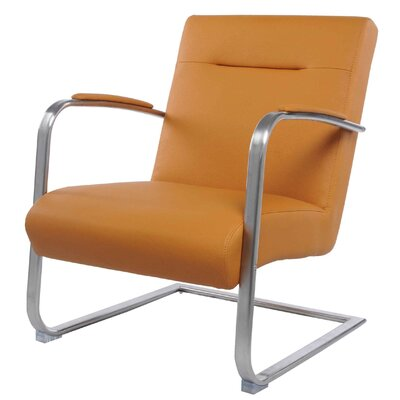 Jerzy Arm Chair Color: Turmeric