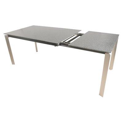 Maciejewski Extendable Dining Table Finish: Stainless Steel