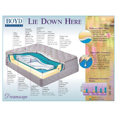 Buy Boyd - Air Beds, Mattresses, Water Mattresses | Wayfair