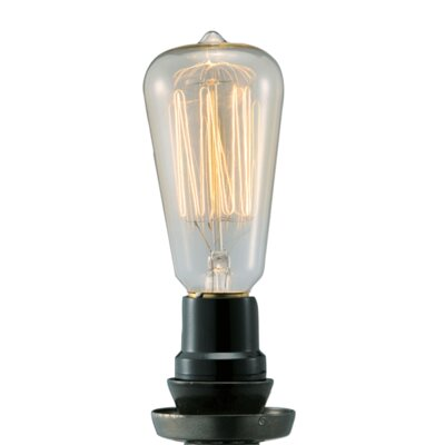 40W Light Bulb (Set of 2)