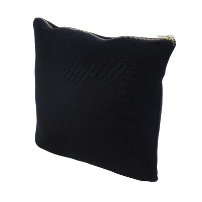 Throw Pillow Size: 17.75 H x 17.75 W x 1 D, Color: Black