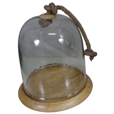 Fall Wood and Glass Cloche Size: 13 H x 12.3 W x 12.3 D