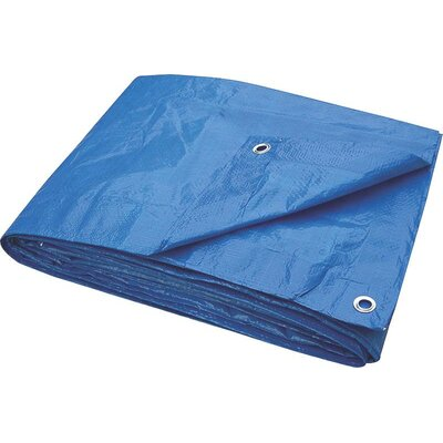 Toolbasix Tarp Light Duty Size: 8 x 10