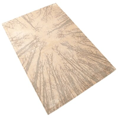 Birch Taupe Area Rug Rug Size: 76 x 106