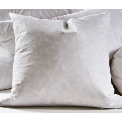 Decorative Cotton Throw Pillow Insert Size: 26 H x 26 W