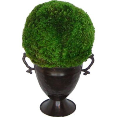 Metal Trophy Small Vase With Moss Topiary Ball