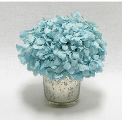 Mini Preserved Hydrangea in Vase Flower Color: Ice Blue
