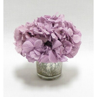Mini Preserved Hydrangea in Vase Flower Color: Lavender