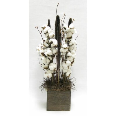Cotton Floral Arrangements