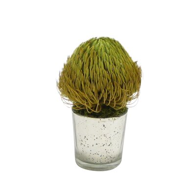 Banksia Floral Arrangement Flower/Leaves Color: Basil