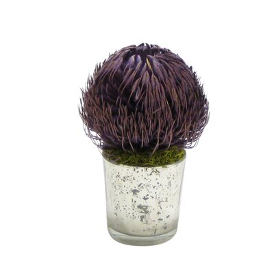 Banksia Floral Arrangement Flower/Leaves Color: Lavender