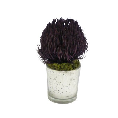 Banksia Floral Arrangement Flower/Leaves Color: Purple