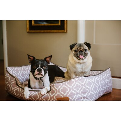 Moroccan Lounge Dog Bed Size: Large (38 L x 30 W), Color: Ash