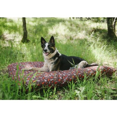 Dodger Outdoor Dog Bed Size: Large (11.02 H x 48 W x 35.5 D), Color: Brown