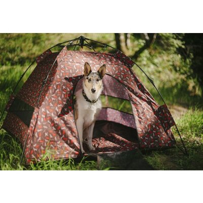 Scout & About Outdoor Dog Tent Color: Mocha
