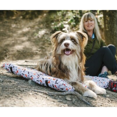 Scout & About Outdoor Chill Dog Pad Size: Small (1.57 H x 24 W x 18 D), Color: Vanilla