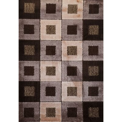 Signature Checkered Earthtone Area Rug Rug Size: Runner 3 x 8