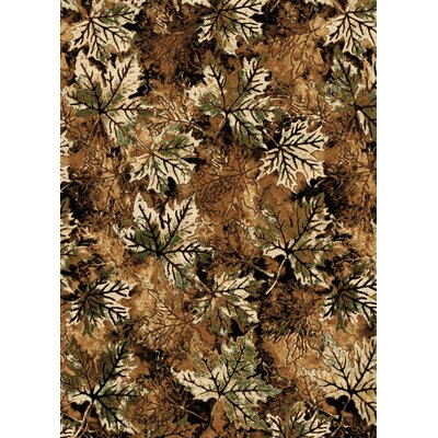 Ethnic Brown Area Rug Rug Size: 8 x 11