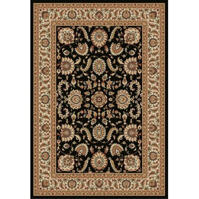 Istanbul Black/Brown Area Rug Rug Size: 7 x 10