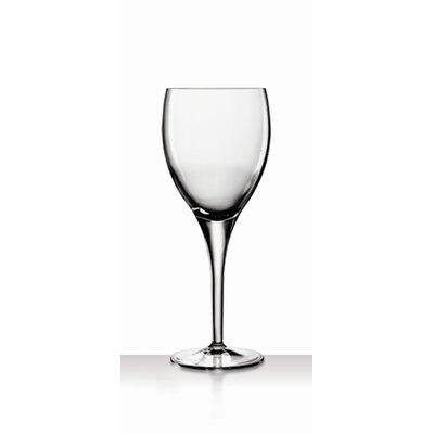 Michelangelo All Purpose Wine Glass 10367/01
