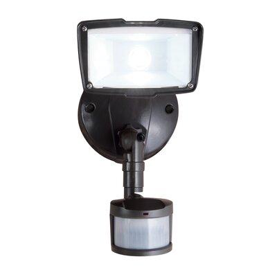 All-Pro Flood Light