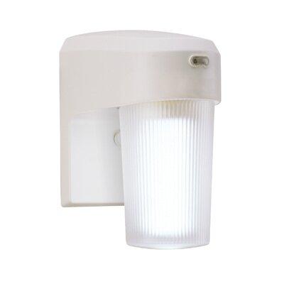 13 Watt CFL Dusk-to-Dawn Light in White