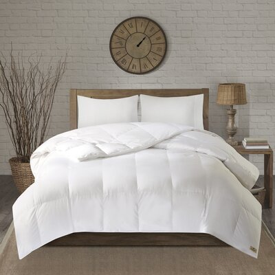Power Down Comforter Size: Twin
