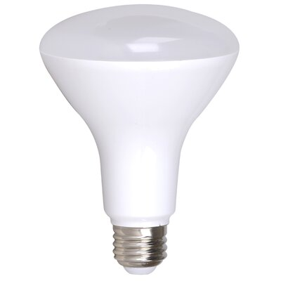 17W E26/Medium (Standard) LED Light Bulb