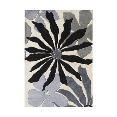 New Zealand Handmade White Sand Area Rug Rug Size: 4 x 6
