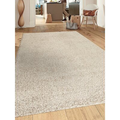 Caressa Cream Area Rug Rug Size: Rectangle 53 x 73