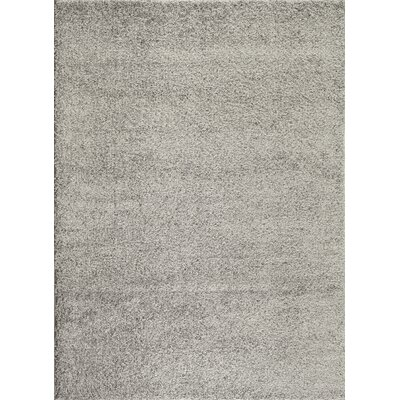 Caressa Light Gray Area Rug Rug Size: 53 x 73