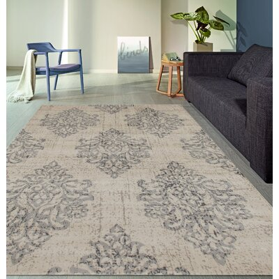 Elite Soft Gray Area Rug Rug Size: Rectangle 33 x 5