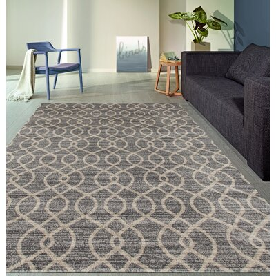 Elite Soft Gray Area Rug Rug Size: Rectangle 53 x 73