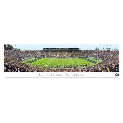 Ncaa 50 Yard Line Unframed Panorama Ncaa Team: University Of California Berkeley