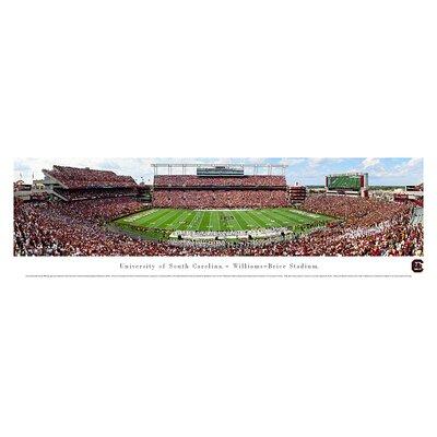 Ncaa 50 Yard Line Unframed Panorama Ncaa Team: University Of South Carolina