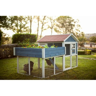 The Rooftop Garden Chicken Coop