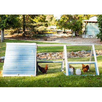 The A-Frame Chicken Coop with Roosting Bar