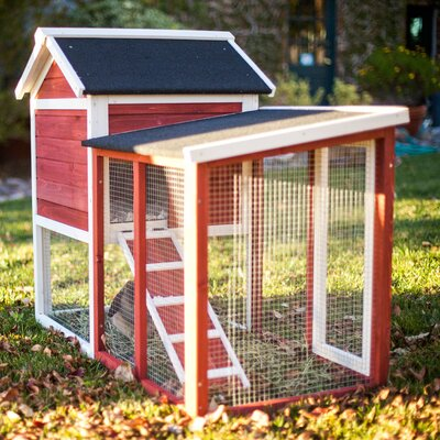 The Stilt House Rabbit Hutch Color: Auburn